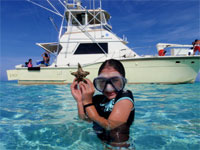 Stingray City  excursion and Starfish