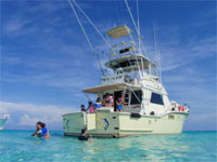 Stingray City & Fishing charters