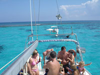 the stingray city stop, right next to the barrier reef in grand cayman